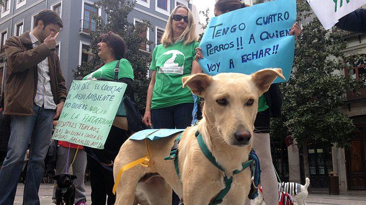 Algunos de los manifestantes este viernes en las inmediaciones municipales. Foto: Luis F. Ruiz